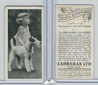 C18-40 Carreras, Dogs & Friend, 1936, #1 Wire-Haired Fox Terrier