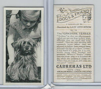C18-40 Carreras, Dogs & Friend, 1936, #10 Yorkshire Terrier