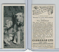 C18-40 Carreras, Dogs & Friend, 1936, #16 Airedale