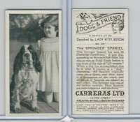 C18-40 Carreras, Dogs & Friend, 1936, #23 Springer Spaniel