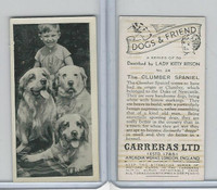 C18-40 Carreras, Dogs & Friend, 1936, #24 Clumber Spaniel
