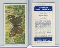 B0-0 Brooke Bond, British Butterflies, 1963, #1 Speckled Wood