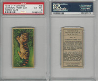V17 Cowan's, Noted Cats, 1925, #18 Common Tabby Cat, PSA 6 EXMT