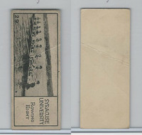 V122 Willard Choc., Sports Champions, 1924, #29 Syracuse University, Rowing