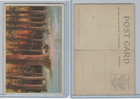 T94 Murad Tobacco, Post Card Series, 1910, Big Trees of California