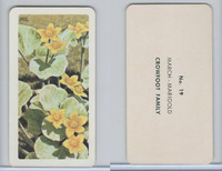 FC34-4 Brook Bond, Wild Flowers NA, 1961, Printer Proof, #19 March Marigold