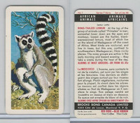 FC34-7 Brook Bond, African Animals, 1964, #1 Ring-Tailed Lemur