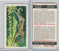 FC34-7 Brook Bond, African Animals, 1964, #23 Cheetah