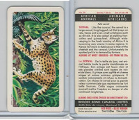 FC34-7 Brook Bond, African Animals, 1964, #26 Serval