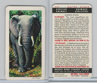 FC34-7 Brook Bond, African Animals, 1964, #29 Elephant