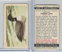 FC34-5 Brook Bond, Birds North America, 1962, #1 Common Loon