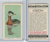 FC34-5 Brook Bond, Birds North America, 1962, #2 Red-Necked Grebe