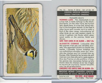 FC34-10 Brook Bond, Canadian/Am. Songbirds, 1966, #13 Horned Lark