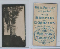 T430 American Tobacco, World Views, 1900, Amsterdam, The New Market