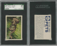 1960's Shell Oil, Pets Picture Cards, #508 Carpet Snake, SGC 96 Mint