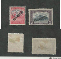 Hungary, Postage Stamp, #2N38, 2N46a Hinged Mint, 1919 Occupation Debrecen