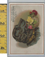 Victorian Card, 1890's, Detroit Soap Co., Black Dog With Basket of Roses