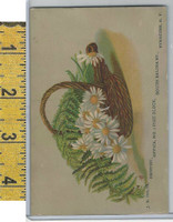 Victorian Card, 1882, Hilts Dentist, Syracuse NY, Flower Basket