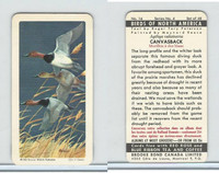 FC34-5 Brook Bond, Birds North America, 1962, #16 Canvasback Duck