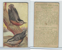 V75 Patterson Candy, Bird Cards, 1924, Red-Breasted Nuthatch