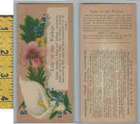 Victorian Card, 1890's, Kimball Drug Store, Lewiston, Flower, Lilly of Valley