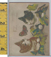 Victorian Card, 1890's, Reward of Merit, Cats, Butterfly