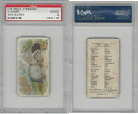 E28 Philadelphia Caramel, Zoo Cards, 1909, Badger, PSA 2 Good