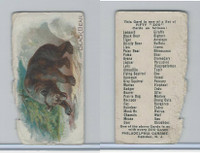 E28 Philadelphia Caramel, Zoo Cards, 1909, Black Bear