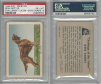F279-5 Quaker, Challenge Yukon, Dog Cards, 1950, Irish Setter, PSA 6 EXMT