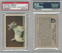 F279-5 Quaker, Challenge Yukon, Dog Cards, 1950, Scottish Terrier, PSA 5 EX