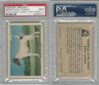 F279-5 Quaker, Challenge Yukon, Dog Cards, 1950, Sm. Fox Terrier, PSA 9 Mint