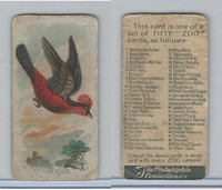 E30 Philadelphia, Zoo Cards, Song Birds, 1907, Araguira