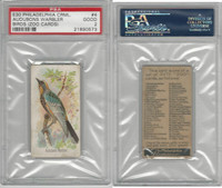 E30 Philadelphia, Zoo Cards, Song Birds, 1907, Audubons Warbler, PSA 2 Good