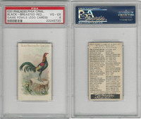 E31 Philadelphia, Zoo Cards, Game Fowl, 1907, Black Breast Red Game Cock, PSA 4