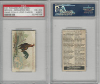 E31 Philadelphia, Zoo Cards, Game Fowl, 1907, Brown BR Game Cock, PSA 4 MC VGEX