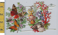 Victorian Card, 1890's, Animals Diecut, Butterfly, Shell, Coral,  Flowers (A3)