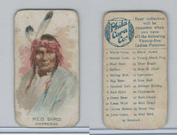E46 Philadelphia Caramel, Indian Pictures, 1911, Red Bird, Chippeway