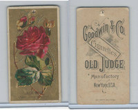 N164 Goodwin Cigarettes, Flowers, 1890, Jack Rose (B)