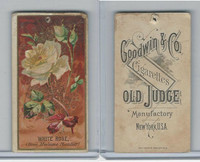 N164 Goodwin Cigarettes, Flowers, 1890, White Rose (B)
