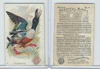 J2, Church & Dwight, Beautiful Birds New Series, 1896, #4 Shoveller Duck