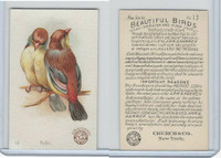 J2, Church & Dwight, Beautiful Birds New Series, 1896, #13 Pytila