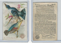J2, Church & Dwight, Beautiful Birds New Series, 1896, #43 Cerulean W Warbler