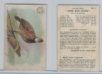 J3, Church & Dwight, Game Bird Series, 1904, #1 Quail