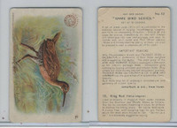 J3, Church & Dwight, Game Bird Series, 1904, #12 King Rail