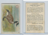 J3, Church & Dwight, Game Bird Series, 1904, #14 Canada Goose