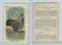 J4, Church & Dwight, New Series of Birds, 1908, #2 Blue Grouse