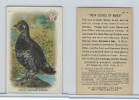 J4, Church & Dwight, New Series of Birds, 1908, #4 Black Canada Goose