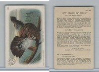 J4, Church & Dwight, New Series of Birds, 1908, #26 Capercalzee