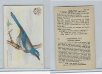 J7, Church & Dwight, Useful Birds America 3rd Ser., 1922, #19 California Jay