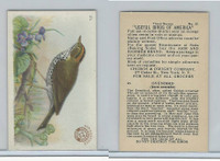 J7, Church & Dwight, Useful Birds America 3rd Ser., 1922, #21 Oven Bird